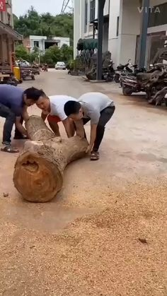Wood Turning Projects, Diy Wood Projects, Fun Projects, Wood Crafts, Easy Woodworking Projects, Woodworking Tools, Woodworking Magazine, Wood Carving Art, Wood Art