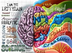 Quale emisfero del nostro cervello è dominante? Scopriamo con questo test se in noi domina la razionalità o la fantasia   IL MONDO DI ORSOSOGNANTE