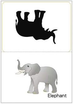 matching pictures to shadows worksheets Christian Kids Crafts, Fun Worksheets For Kids, Halloween Tags, Forest Illustration, Puzzle Books, Alphabet Activities, Jungle Animals, Exotic Pets, Kids Education