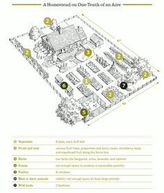 Farm Layout Inspirations On Pinterest Homesteads Acre