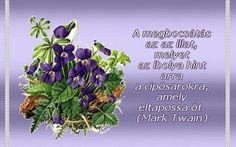 """""""A megbocsátás nem azt jelenti, hogy megértjük, mentegetjük vagy helyeseljük a másik viselkedését, sem azt, hogy elnyomjuk a viselkedés okozta érzéseket.Azt sem, hogy kitöröljük a másik viselkedését az emlékezetünkből, és úgy teszünk, mintha a fájdalom vagy a megaláztatás nem történt volna meg.Azt JELENTi, hogy ÚJra kiNYITjuk a kaput a SZÍVünk előtt, és készek vagyunk felHAGYni a Reménnyel, hogy másként is történhetett volna, felHAGYni a sérelem nélkü Mark Twain, Marvel, Life"""