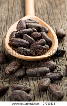 the cocoa beans in wooden spoon - stock photo