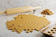 Pumpkin Peanut Butter Dog Treats... link for the recipe:    http://heatherhomemade.com/2012/07/pumpkin-peanut-butter-dog-treats/