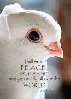 Happy Memorial Day lets pray one day we can all achieve WORLD PEACE merica peace memorialday war happy Peace Dove, Age Of Aquarius, Network For Good, Peace On Earth, Inner Peace, Peace And Love, Inspire Me, Wise Words, Spirituality