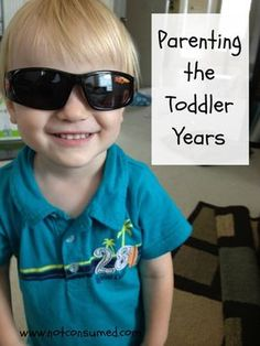 Parenting the Toddler Years...Awesome advice and encouragement from a Christian mother.