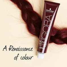 Add multi-tonal depths of glamorous colour with IGORA Opulescence – six NEW Renaissance shades.