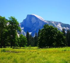 #tbt to that meadow in Yosemite that reminds me far too much of Sound of Music.  #Yosemite #California #travelgram #travelphotography #igtravel #landscape_lovers #mountains #nature #wanderlust #explore