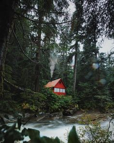 Little cabin in the woods... From the rainy depths of Washington State; hiking the riverside…