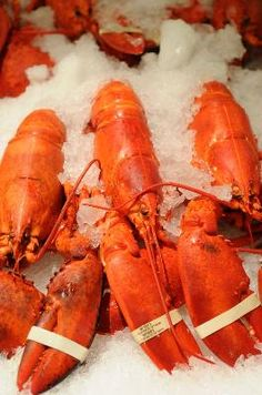 How to Prepare & Freeze Maine Lobster (http://www.lobsterfrommaine.com/using-frozen-lobster)
