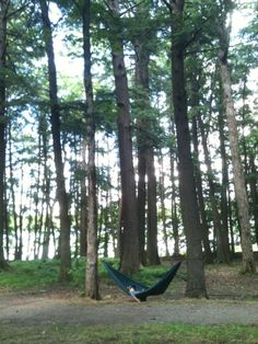 Hammock, Lost Lake Campground, Chequamegon National Forest, Florence, Wisconsin