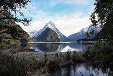 Die Südinsel Neuseeland per Roadtrip erkunde - 10 Tipps für euren Urlaub.