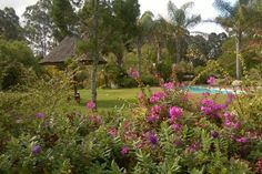 Peace and tranquility in a magical garden - relax, unwind and rejuvinate away from the crowds - 4 Star Coral Tree Cottages comes Highly Recommended when exploring the Garden Route. www.coraltreecottages.co.za