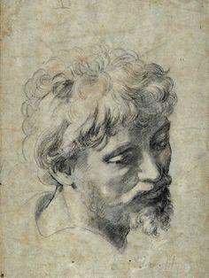 Raphael. Head of an Apostle.