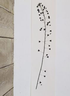 http://www.thecollection.fr/347-1428-thickbox/panneau-de-papier-heartweed-par-tracy-kendall.jpg