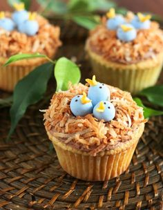 Baby Birds in Nest Cupcakes - These baby blue birds in a nest are a fun cupcake idea. Recipe available.
