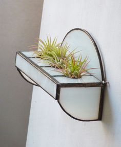 Stained Glass Shelf for Air Plants I can do two of the things I like and be happy