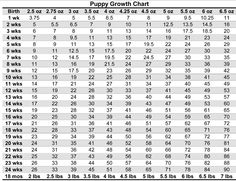Yorkshire Terrier Growth Chart. Learn what weight and size