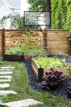 Fertilization 101 – Growing Vegetables In Your Organic Garden – Info For Your Garden Side Garden, Raised Garden Beds, Herb Garden, Garden Tools, Raised Beds, Raised Gardens, Organic Vegetables, Growing Vegetables, Gardening For Beginners