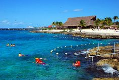 Chankanaab National Park in Cozumel Mexico.  Beautiful place where I got to swim with the dolphins and fantastic snorkeling!!!!  A must visit!!!!