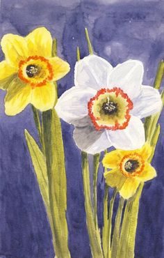 How to paint Daffodils in watercolours/watercolors. 2 hours live recorded class replay available for purchase at $14. Step by step instructions. art, paint, paper, lesson, class, video