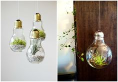 Ideas para Convertir Bombillas en Preciosos Objetos de Decoración | Ideas Muebles