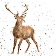 'Wild at Heart' Wrendale Designs (Hannah Dale) Watercolor Animals, Watercolor Art, Wild At Heart, Wrendale Designs, Heart Designs, Wildlife Art, Wild Hearts, Animal Paintings, Christmas Art