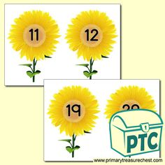 Sunflower Number Line Numeracy Activities, Number Activities, Teaching Activities, Teaching Math, Toddler Activities, Teaching Ideas, Maths, Printable Number Line, Printable Numbers