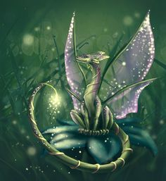 pictures dragons with fairies | Fairy-tail dragon by Benegeserit on deviantART
