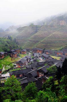 Dragon's Backbone Rice Terraces, Longsheng, Guangxi, China