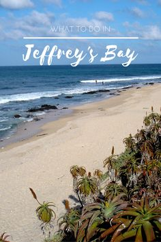We have loved Jeffreys bay ( Jbay) for the longest time; here's a few things we suggest you try when visiting this gem of a seaside town in South Africa.