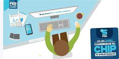 Family Guy, Portal, Character, Carrera, Miami, Marketing, Blog, Home, How To Earn Money