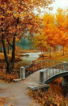 Look how beautiful this landscape & The post Look how beautiful this landscape & autumn scenery appeared first on Trendy. Beautiful World, Beautiful Places, Beautiful Pictures, Beautiful Scenery, Beautiful Nature Wallpaper, Beautiful Landscapes, Fall Pictures, Nature Pictures, Landscape Photography