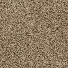 Stainmaster Petprotect Lexington Fb030 Reflection Textured