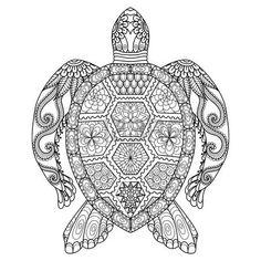 Dibujo tortuga zentangle de la p�gina para colorear, camisa efecto de dise�o, logotipo, tatuaje y decoraci�n. photo
