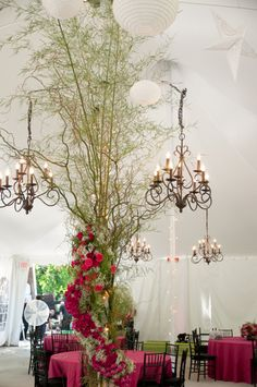Gorgeous pink and black reception