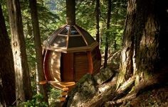 The HemLoft: A Secret Treehouse in the Woods