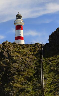 Cape Palliser Lighthouse Wairarapa New Zealand