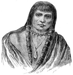 Sioux Indians Hair Dressing. The buffalo provided the Sioux with all they needed; tipi coverings, blankets, clothing made from buffalo hide; thread and rope from sinews; tools and weapons from the bones. Buffalo chips were used for fuel; hooves and horns and skulls were used for ceremonial objects; they ate the tongue, liver, kidneys, bone marrow, and the intestines.