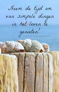 Neem de tijd om van simpele dingen in het leven te genieten!