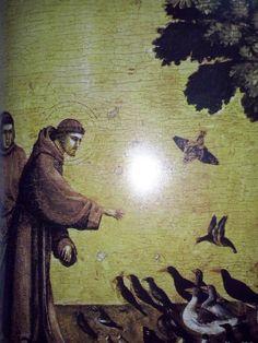 FANTASIA  ESTRELAR: O Protetor dos Animais e Plantas apresentando Orqu...