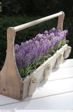 **1**Grow lavender in my wooden box!!!