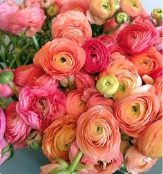 Ranunculus/is a category of flowering plants in the family Ranunculaceae. The petals are typically very lustrous, particularly in yellow types, owing to a unique coloration mechanism: the flower's top surface is smooth triggering a mirror-like reflection. My Flower, Fresh Flowers, Beautiful Flowers, Flower Names, House Beautiful, Orange Flowers, Tropical Flowers, Summer Flowers, White Flowers