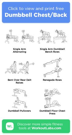 Dumbbell Chest/Back · Free workout by WorkoutLabs Fit