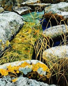 detail of High Tide Pool by Amanda Richardson - UK textile artist -- fabric collage with hand-painted silks!