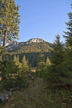 Tatrzańskie szlaki. Mount Rainier, Europe, Mountains, Nature, Travel, Naturaleza, Viajes, Destinations, Traveling