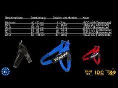 Julius-K9 Beltgeschirr, Belt dog harness - YouTube