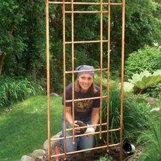 iinstructions for a copper garden trellis. cool idea...
