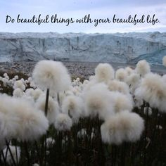 Do beautiful things. Made with Quotiful for iPhone. #life #beauty #quotes
