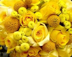 I'm delighted to share with you this weeks expert - New York City Event guru Jeffrey Marcus from JM Visuals ! Besides boasting a client li. Lemon Yellow, Yellow Roses, Green And Orange, Mellow Yellow, Color Yellow, Bright Yellow, Yellow Bouquets, Primroses, Shades Of Yellow