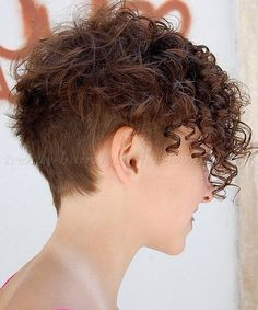 Image from http://trendy-hairstyles-for-women.com/pictures/hairstyles/short-hairstyles-for-women/short-undercut-hairstyles/undercut-hairstyle-for-short-curly-hair_b.jpg.